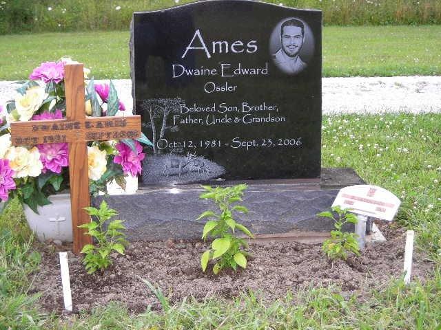 Dwaine E. Ames