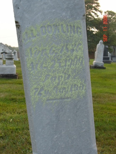 John L. Dowling